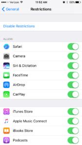 screen shot of restrictions menu