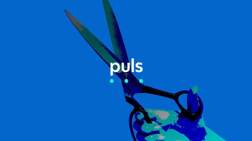 puls coupon code promo