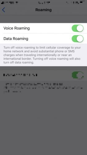 turn on voice roaming and data roaming