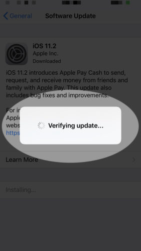 verify update on iphone