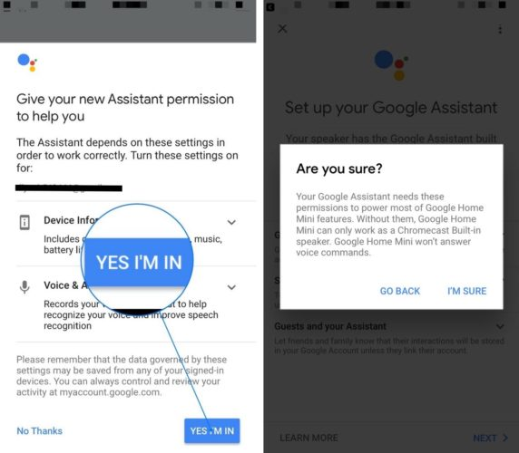 give google assistant iphone permission