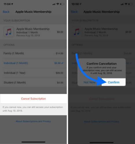 confirm cancel subscription on iphone