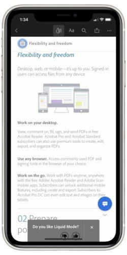 Adobe Acrobat Open PDF View